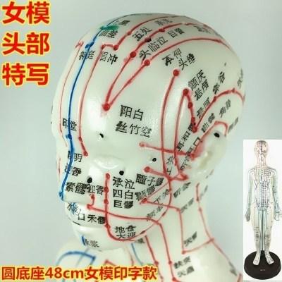 所走勢走向筋脈保健理療刮痧男性女性人體模型經絡穴位圖拔罐 普通印字款48cm女模清晰度一般