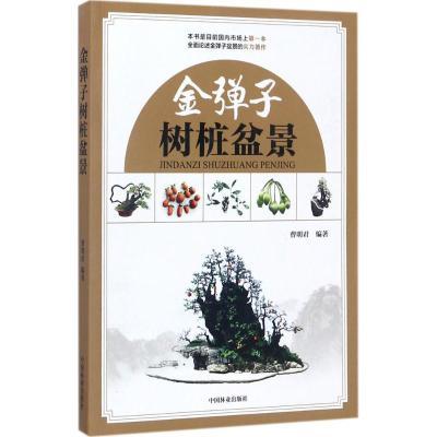 正版 金弹子树桩盆景 曹明君 编著 中国林业出版社 9787503892325 书籍