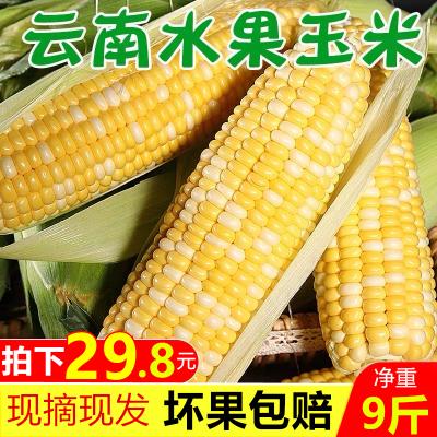 【靚果匯】水果玉米9斤裝 新鮮產地現摘果蔬 甜嫩多汁