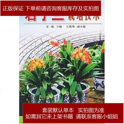 君子蘭栽培技術 安娟等編 金盾出版社 9787508223131