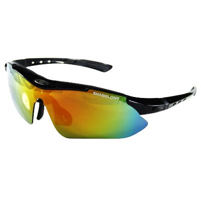 尚龙骑行眼镜 户外运动时尚防风镜 橡胶内衬防护 自行车眼镜 镜腿可卸 黑色SL-A07