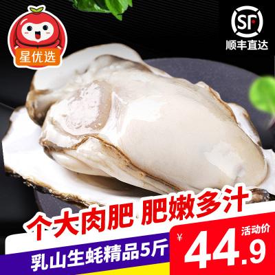 【順豐直達】星優選 鮮活乳山生蠔精品5斤裝 約25-50個 單個50-100g 牡蠣海蠣子 生鮮貝類海鮮水產