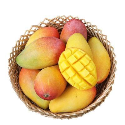 苗家十八洞 海南貴妃芒果5斤 單果重約50g左右 果肉豐滿 時令新鮮水果