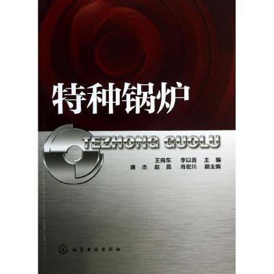 正版 特种锅炉 王向东 等 编 化学工业出版社 9787122179197 书籍