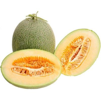 西州蜜瓜2.5斤新鮮當季水果甜哈密瓜甜瓜香瓜網紋蜜瓜 七仙紅(2份合并凈重4.5-5斤)