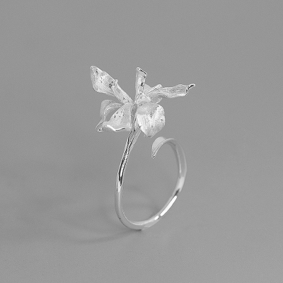 梵靈梵高唯美鳶尾花戒指S925銀氣質花朵輕奢意境