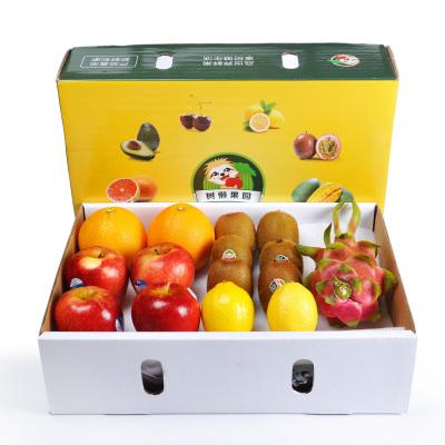 樹懶果園 四季繽紛水果禮盒 約3kg (蘋果奇異果臍橙檸檬火龍果)