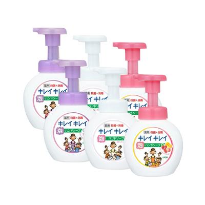 6瓶   日本LION/獅王泡沫兒童洗手液 250ml 復合果有香型殺菌消毒(保稅)
