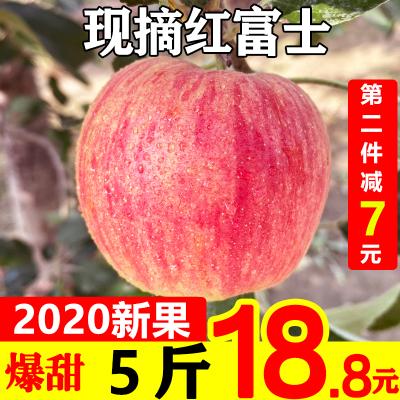 (第二件減7元)紅富士蘋果5斤裝 單果75-80mm (兩件合并發貨,帶箱凈8.5-9斤)