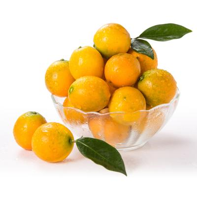 滑皮金桔2.5斤 (偶數發貨 拍2件合并發1箱)親多多 柑橘類
