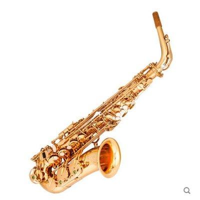 里歌LIGE降E中音萨克斯风管乐器初学入门考试演奏专用 LAS-610
