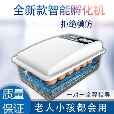 納麗雅(Naliya)孵化器小型家用孵化機全自動智能水床孵蛋器全自動家用型迷你兒童 36枚硬泡沫全自動雙電