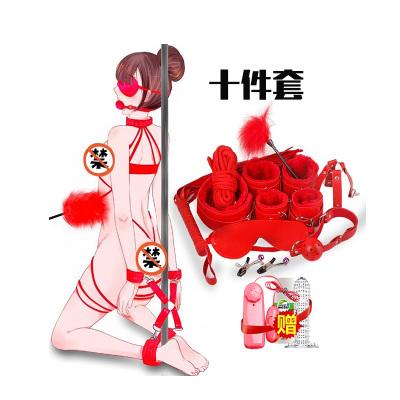成人情趣SM用品組合套裝十件另類玩具男女共用捆綁束縛乳夾奶飾女性系列穿戴式口塞口球手銬腳銬刑具夫妻性生活女士久愛愛性工具